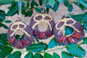 Three Bird Seed Wreaths
