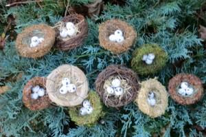 Ten Tiny Nests