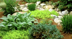 Soft Green Bed